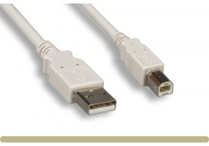 USB 2.0 A Male / B Male Cable Beige Color