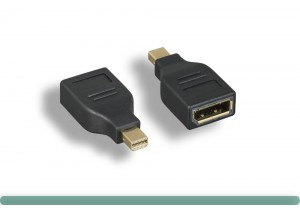 Mini DisplayPort to DisplayPort Adapter