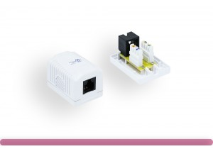 1-Port Cat. 6 Surface Mount Box