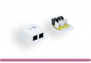 2-Port Cat. 6 Surface Mount Box