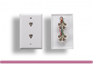 2 Port Wall Plate with 6P4C Jack, White Color