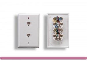 2 Port Wall Plate with 6P6C Jack, White Color