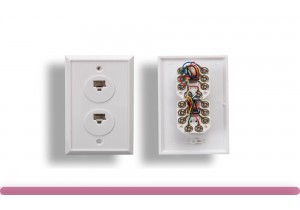 2 Port Wall Plate with 8P8C Jack, White Color